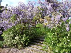 Le Jardin du Phenix - Varenne l'Arconce